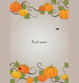 pumpkin and ivy with spider frame vector image