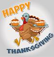 turkey 3 vector image vector image