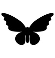 Abstract butterfly silhouette isolated on white vector image vector image