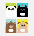 baby panda cat dog bear kitty head kitten vector image
