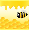 bee in the hive vector image vector image