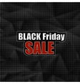Black Friday Sticker vector image vector image
