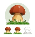 Cep Mushroom vector image vector image