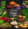 herbs and spices poster for fresh seasonings shop vector image
