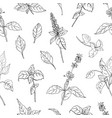natural seamless pattern with basil leaves and vector image vector image