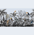 seamless border with jungle trees and animals vector image
