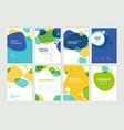 set brochure annual report design template vector image