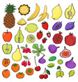set of stylized sketch fresh cute fruits vector image