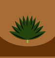flat icon design collection leaf of tree vector image vector image