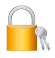 Golden padlock with keys on white background vector image vector image