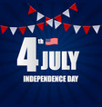 independence day in usa background can be used as vector image vector image