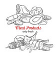 meat product vector image vector image