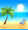 Palm and deck chair on sunny beach vector image vector image