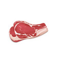 piece of uncooked fresh meat realistic vector image