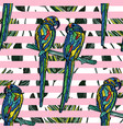 seamless pattern with parrots vector image vector image