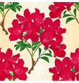 seamless texture red rhododendron branch vintage vector image vector image