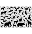 set of animals silhouettes isolated vector image vector image