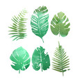 set watercolor tropical plants leaves vector image