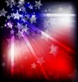america2 vector image