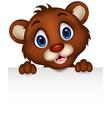 cute baby brown bear cartoon posing with blank sig vector image