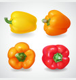 pepper bell vegetable realistic icon set vector image vector image