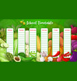 school timetable with farm veggies template vector image vector image