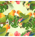 seamless texture parrots agapornis vector image vector image
