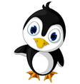 cute baby penguin cartoon posing vector image vector image