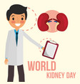 doctor with clipboard world kidney day vector image