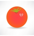 Flat Design Tomato Icon vector image