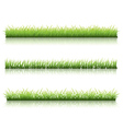 Green grass line vector image
