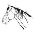 horse head profile2 vector image