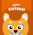lion happy birthday card vector image