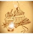 Vintage background with Cupcake and cinnamon vector image vector image