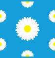 white daisy marguerite chamomile icon cute flower vector image vector image