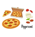 Whole pizza and slices of pizza pepperoni in open vector image vector image