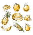 assortment of yellow foods fruit and vegtables vector image vector image