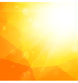 Bright Summer Sun Background vector image