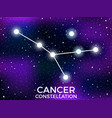 cancer constellation starry night sky cluster of vector image vector image
