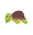 cartoon comic green turtle lying on stomach vector image vector image