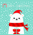 merry christmas white polar bear cub face holding vector image vector image