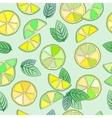 mojito seamless pattern vector image