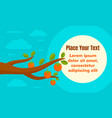 persimmon concept banner flat style vector image vector image