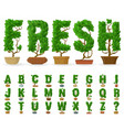 potted tree abc vector image vector image