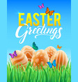 template card with realistic eggs grass vector image