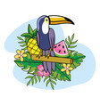 toucan with pineapple and watermelon with plants vector image vector image