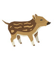 wild animals baby wild boar isolated object vector image vector image