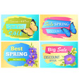 big spring sale advert labels flowers butterfly vector image