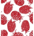 background with raspberry and blackberry vector image