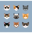 Cats heads in flat style vector image vector image